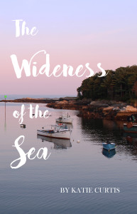 wideness of the sea cover 202